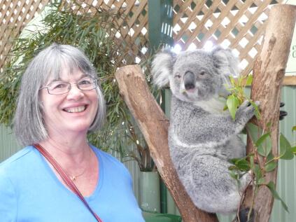 pam davis and a koala